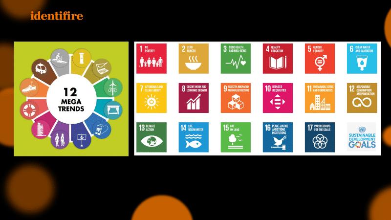 Sustainable development goals identifire